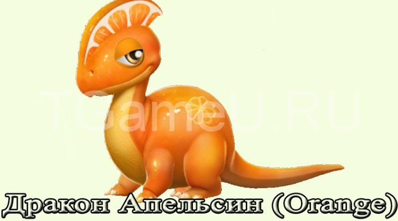 дракон апельсин