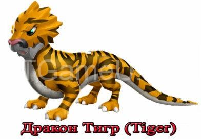 дракон тигр
