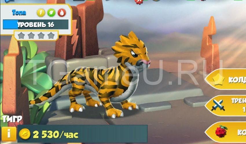 тигр описание