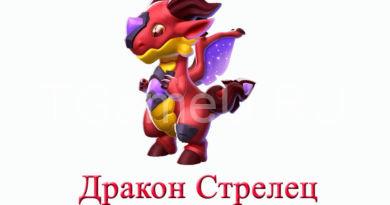 дракон стрелец